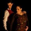FLAMENCO VIVO / CARLOTA SANTANA: The Soul of Flamenco