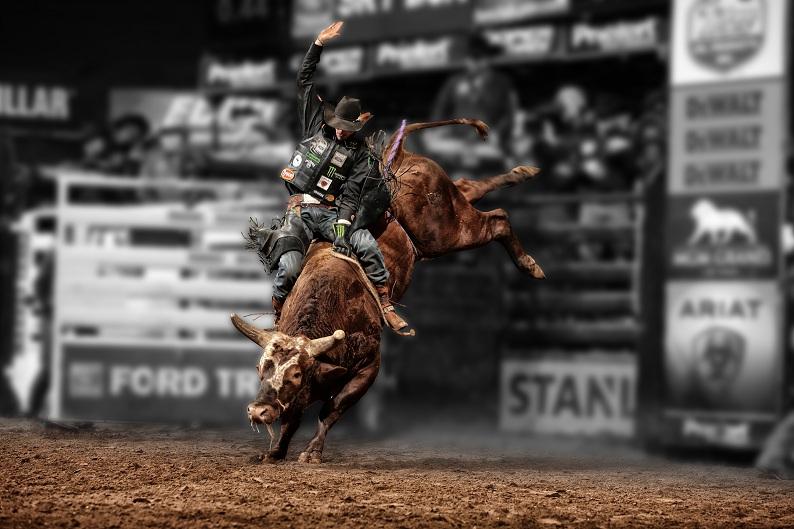 Professional Bull Riders - pfiwestern.com Invitational